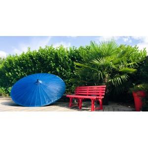 Parasol en bambou